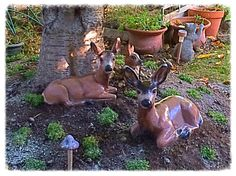 The completed deer family in their new home in my back yard...I LOVE them!  Can't wait to get started on my other statues...