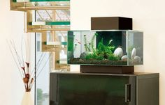 Aquarium de Fluval