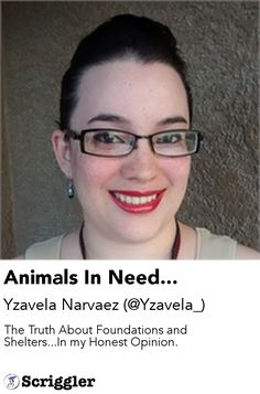 Animals In Need... by Yzavela Narvaez (@Yzavela_) https://scriggler.com/detailPost/story/59949 The Truth About Foundations and Shelters...In my Honest Opinion.