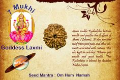 Benefits of seven mukhi: Goddess: Laxmi / Planet : Saturn  Seed Mantra : Om Hum Namah Seven mukhi Rudraksha bestows wealth and pacifies the ill effects of Shani (Saturn). It also provides relief from joint pain and other ailments associated with Saturn. It is also kept in cash box. Wearer gets wealth and good health. This Rudraksha is blessed by Goddess Maha Laxmi. http://www.rudralife.com/Rudraksha/details.php?id=114