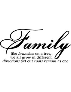 """""""Family like branches on a tree, we all grow in different directions yet our roots remain as one"""""""
