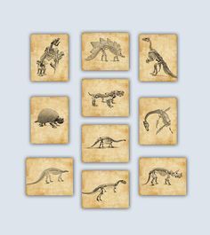 Set of 10 Dinosaur Skeletons illustrations Prints Please select size and style options from the drop down menu under pricing. ***************************** SIZE ***************************** >> inches, image size is inches cm), paper size is inches >> Dinosaur Room Decor, Dinosaur Nursery, Dinosaur Art, Dinosaur Prints, Kids Bedroom Designs, Bedroom Kids, Oil Pastel Paintings, Dinosaur Skeleton, Baby Room Decor