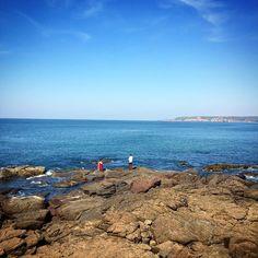 Beautiful Kokan #kokan #incredibleindia #igersindia #ig__india #india #beach #nature #photography #photographer #traveling #iphoneonly