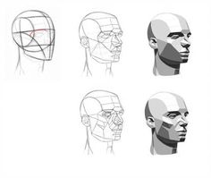 Anatomy Drawing Tutorial Asaro's Planes of the Head by Aliciane - Facial Anatomy, Head Anatomy, Human Anatomy Drawing, Human Figure Drawing, Anatomy Art, Face Planes, Planes Of The Face, Plane Drawing, Drawing Heads