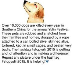 STOP YULIN!! repin if you're against this!
