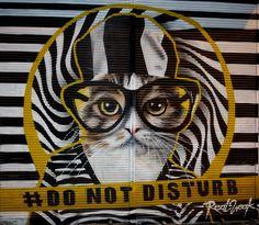 Real Weak in Istanbul Street Wall Art, Street Art Graffiti, Floor Murals, Graffiti Designs, Urban Art, Cool Artwork, Cats And Kittens, Istanbul, Kitty