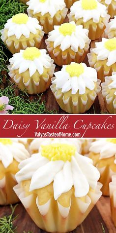 These Daisy Vanilla Cupcakes are fairly easy to make and very delicious. They look appealing to people of all ages in their beautiful and tasty small cake portions. They are great for any holiday or occasion. #vanillacupcakes #daisycupcakes #cupcakes #valyastasteofhomec | www.valyastasteofhome.com Best Dessert Recipes, Chef Recipes, Holiday Recipes, Cookie Recipes, Delicious Desserts, Winter Desserts, Thanksgiving Desserts, Christmas Desserts, Daisy Cupcakes