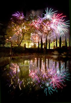 Fireworks Reflection / 20 Incredible Photographs of Fireworks Reflected in Water Fireworks Art, 4th Of July Fireworks, Fireworks Displays, Fireworks Pictures, Fireworks Photography, Fire Works, Water Reflections, Mirror Image, Night Skies