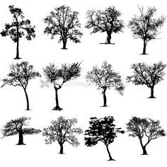 Tree Silhouettes Vector Clip Art Images