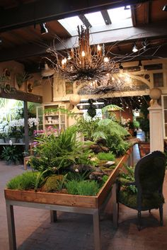 Roger's gardens Newport Beach; Extensive inventory of plants, art, garden items, and gifts. Also a selection of miniature accessories and plants for miniature gardens.