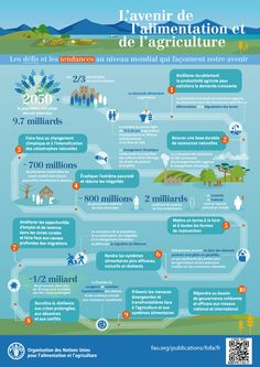 This infographic sheds some light on the nature of the challenges that agriculture & food systems are facing now and throughout the century. The future of food & agriculture with global trends and challenges. Environment Topic, Food Security, Food System, Sustainable Food, Applied Science, Project Based Learning, Environmental Issues, Food Industry, Natural Resources