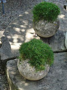 Garden Balls   by sunshinesyrie