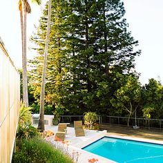 California dreamin' A classic California scene—palm trees, redwoods, and of course, a pool.