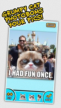 Apps Based On Popular Memes Grumpy Cat, Nyan Cat, & Keyboard Cat