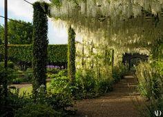It took 14 years to train Trachelospermum asiaticum—a scented flowering jasmine— into the massive evergreen columns flanking the pergolas' square openings.
