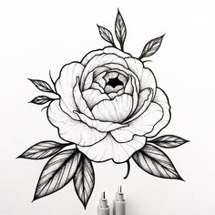 Peony rose design for April!  #illustration #pen #sketckbook #drawing #micron #micronpen #linework #dotworker #dotworktattoo #dotwork #stippling #peony #blacktattoo #blacktattooart #iblackwork #btattooing #blacktattoo #blxckink #darkart #darkartists #blackwork #worldofpencils #art_collective #art_share #peonytattoo #flowertattoo #floraltattoo #blackflashwork
