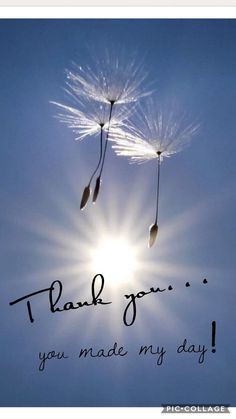The Best Happy Birthday Memes - Mikela Memoirs Thank You For Birthday Wishes, Thank You Wishes, Thank You Greetings, Happy Birthday Quotes, Happy Birthday Cards, Birthday Greetings, Thank You Qoutes, Thank You Messages Gratitude, Thank You Images