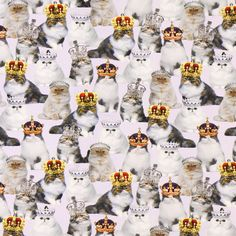 Jersey Digital – Cats with Crowns - Jersey Digital Printfavorable buying at our…