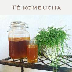 """Sapete che cos' è #Kombucha? #Bevanda #fermentata a base di tè originaria della Cina. È considerato sin da tempi antichi un """"elisir di lunga vita"""". Si é rivelata utile per prevenire, alleviare e talvolta perfino #curare #malattie cronico-degenerative. Dovuto alla sua incredibile capacità di #disintossicare profondamente tutto l'organismo, di stimolare e potenziare il sistema immunitario, di migliorare il metabolismo cellulare e di rafforzarne la membrana. Da oggi potete trovarla qui da noi…"""