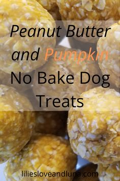 Easy 3 ingredient no-bake treats for your dog. No Bake Dog Treats, Peanut Butter Dog Treats, Healthy Dog Treats, Doggie Treats, Homemade Horse Treats, Homemade Dog Cookies, Homemade Dog Food, Easy Dog Treat Recipes, Raw Food Recipes