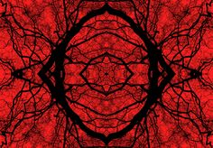 Series in Red II - Image 1 (Limited Edition #2 of 6), Frikkx -
