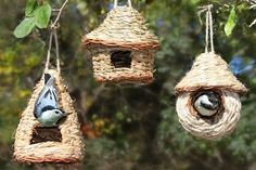 Give shelter to small birds! Nesting huts are great for providing birds with… Willow Weaving, Basket Weaving, Garden Deco, Bird Theme, Humming Bird Feeders, Small Birds, Wild Birds, House Painting, Trees To Plant