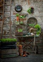 Love the stone wall and ladder in this garden...