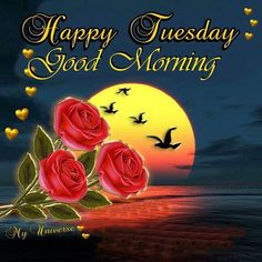 Happy Tuesday!  Here we have 15 Good Morning Happy Tuesday quotes to start your Tuesday morning.  Wish your friends and family a great Tuesday and help get their day started off right with one of these Tuesday image quotes.