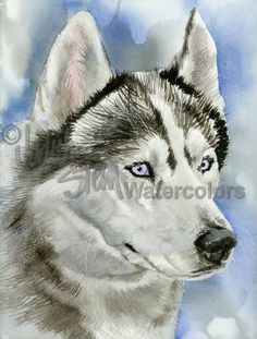 SIBERIAN Alaskan Husky Dog Watercolor Giclee Print by k9stein
