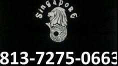 Kaos Singapore model no.#09, Warna Hitam, Harga Rp. 60.000,- (tidak termasuk ongkir) Type Unisex, Ukuran S, M, L & XL, Berat 190gr.  Berminat Hubungi : Bpk. Nuswantoro Hp / WA : 0813-7275-0663, Kaos Merlion Singapore, Kaos Import Singapore, Jual Kaos Singapore, Kaos Khas Singapore, Beli Kaos Singapore, Baju Kaos Singapore, Kaos Oleh2 Singapore, Kaos Oleh-oleh Singapore, Kaos Oblong Singapore, Kaos Bertuliskan Singapore,