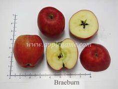 Braeburn apple identification