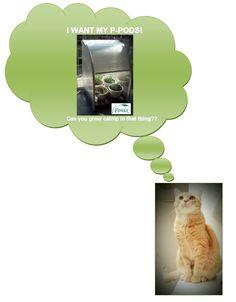 Back the P-Pod Kickstarter campaign: http://kck.st/174Mugc  Help Buddy the Cat to get fresh catnip!