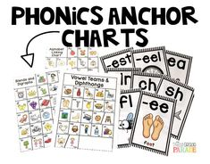 Visually engaging phonics anchor charts perfect for display or use as skill reinforcement during small group/whole group activities and lessons.