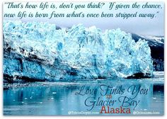 New life is born from what's been stripped away....  Love Finds you in Glacier Bay, Alaska