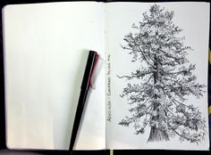 Playing with my favourite pen and subject Pens, Drawings, Artist, Artists, Sketches, Drawing, Portrait, Draw, Grimm