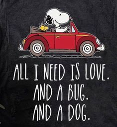 This except a mastiff and not Snoopy Halloween Infantil, Van Vw, Snoopy Quotes, Snoopy Song, Peanuts Quotes, Beetle Convertible, Joe Cool, Charlie Brown And Snoopy, Snoopy And Woodstock