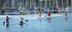 Learning to stand up paddle at the SUP Shack on the beautiful Santa Cruz Harbor waters!