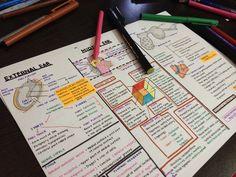 I should be studying : Photo