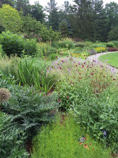 Are show gardens making us bad gardeners? by Elizabeth Licata