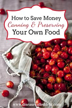 Make your food go further - and save money - by canning and preserving it. Find out how to get started with canning foods in this post!