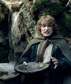 LOTR, pippin took, and pippin image