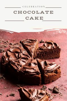 An easy, no mixer chocolate celebration cake. This cake is moist, tender, soft and a great dessert idea for valentines day, birthday or any other special occasion. Homemade Sheet Cake Recipe, Sheet Cake Recipes, Cake Recipes From Scratch, Great Desserts, Best Dessert Recipes, Sweet Recipes, Delicious Desserts, Baker Recipes, Fun Baking Recipes