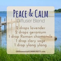 Peace and Calm Diffuser Blend Find your zen? Try these calming essential oil diffuser blends to beat stress by mallory Helichrysum Essential Oil, Doterra Essential Oils, Doterra Blends, Yl Oils, Essential Oil Diffuser Blends, Essential Oil Uses, Doterra Diffuser, Aromatherapy Diffuser, Diffuser Recipes