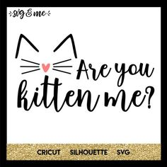 Calling all cat lovers! The perfect free SVG to create a cute cat themed shirt or to decorate your cat's supplies bin, cat condo, etc. Compatible with Cricut, Silhouette and other cutting machines. Are You Kitten Me? - SVG & Me Kathy W Elec Cat Silhouette, Silhouette Cameo Projects, Silhouette Design, Gato Crochet, Jack Russell, Free Svg Cut Files, Cat Supplies, Cricut Vinyl, Cricut Air