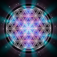 One conscience, one species,simply having a human experience. Love. All life is this pattern, The Flower of Life,Genesis Pattern, Sacred Geometry learn it.