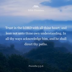 Trust in the LORD with all your heart and lean not on your own understanding; In all your ways acknowledge him, and he will make your paths straight.