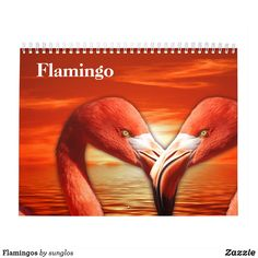 Shop Flamingos Calendar created by sunglos. 2021 Calendar, Sphynx, White Elephant, Gifts For Family, South America, Holiday Gifts, Kittens, Christmas Cards, Bird