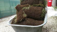 Hogyan készül? Time lapse, gyepszőnyegterítés #hogyankészül #timelapse #... How To Dry Basil, Herbs, Herb, Medicinal Plants