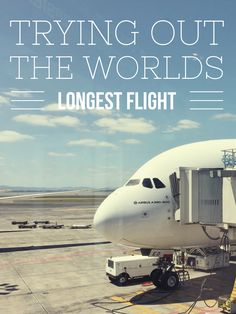 Little Bit Of Love, Airbus A380, Long Flights, Aircraft, World, Travel, The World, Aviation, Trips