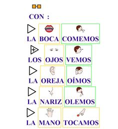 Los 5 sentidos Spanish Immersion Programs, Bilingual Kindergarten, Teaching Spanish, Spanish Quotes, Quote Posters, Body Parts, Learning, School, Kids